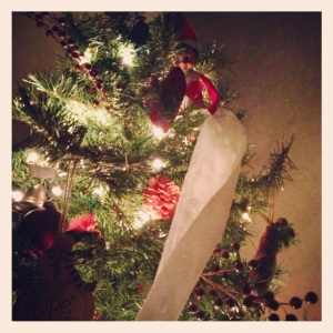 Fred tp'd our tree!